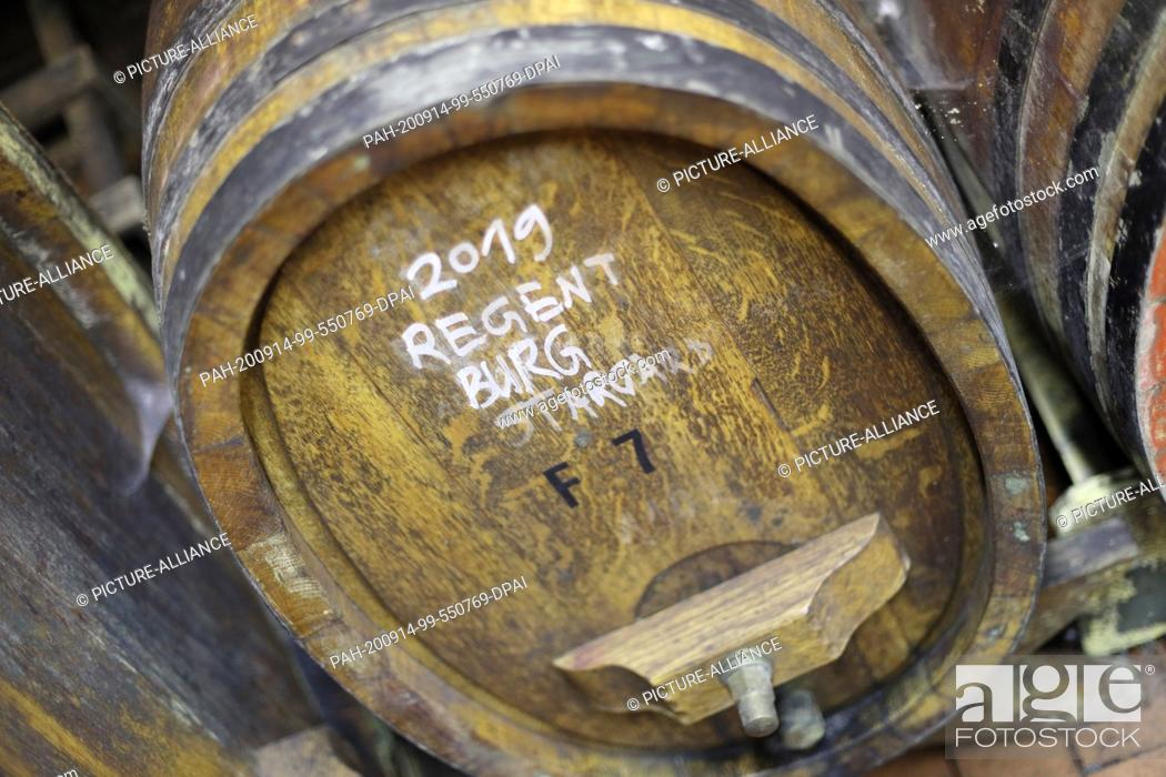 Stock Photo: 09 September 2020, Mecklenburg-Western Pomerania, Rattey: View of a wooden barrel in the wine cellar of the Schloss Rattey winery.