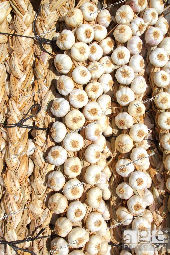 Stock Photo: garlic bundles strings food texture background pattern.