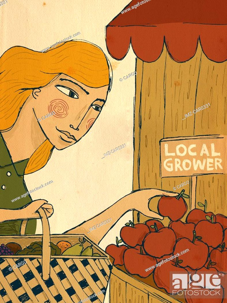 Stock Photo: A woman picking apples from a local grower.