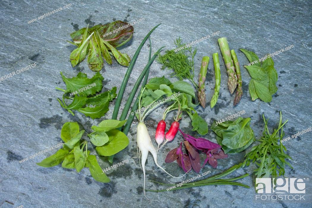 Stock Photo: Vegetables, salads, lettuces, Hospezi, Trun, agriculture, canton, GR, Graubünden, Grisons, Switzerland, Europe, healthy, eat, Food,.