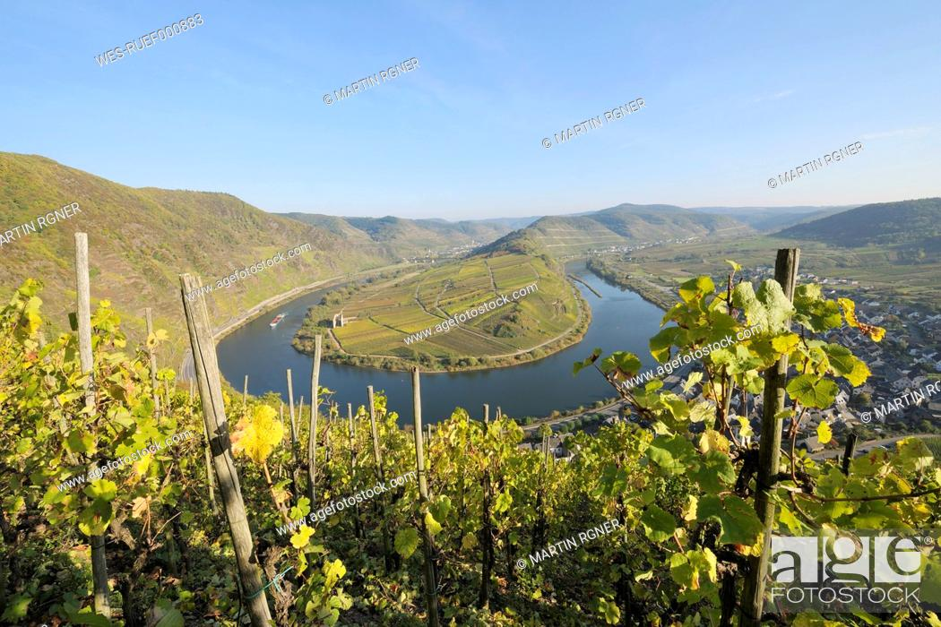 Stock Photo: Germany, Rhineland-Palatinate, Moselle loop with town Bremm and vineyard.
