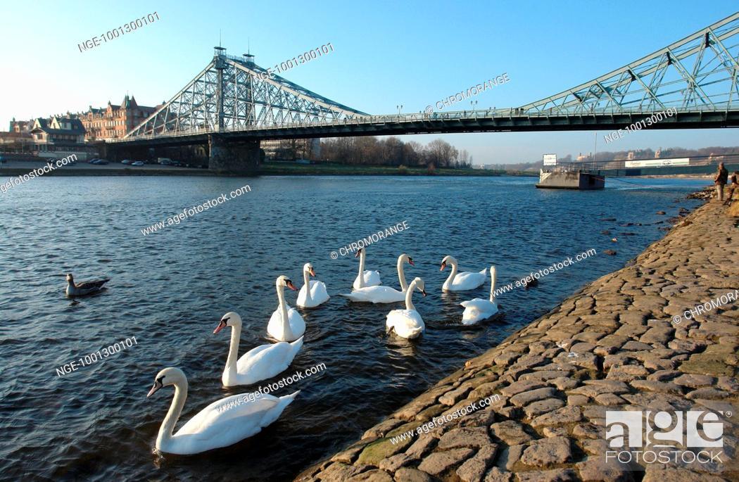 Imagen: Bridge in Dresden.