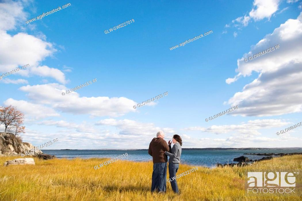 Stock Photo: Rear view of a couple standing on the beach.