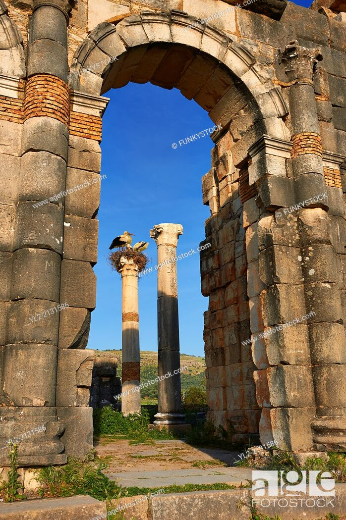 Stock Photo: Exterior of the Basilica at Volubilis. Completed during the reign of Macrinus in the early 3rd century, it is one of the finest Roman basilicas in Africa and is.