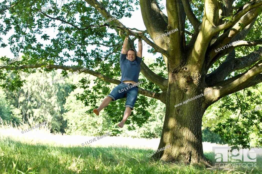 Stock Photo: A young man swinging from the branch of a tree.