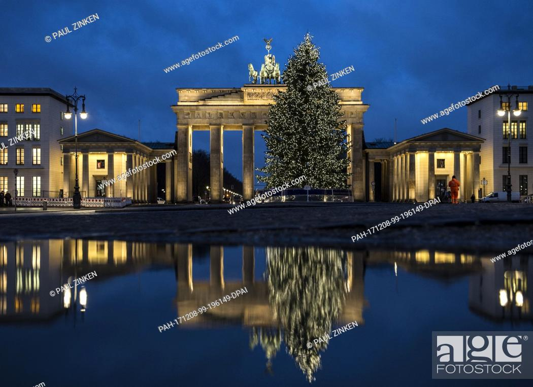 Stock Photo: The Brandenburg Gate and the Christmas tree in front of it reflect in a pdudle in the morning in Berlin, Germany, 8 December 2017.