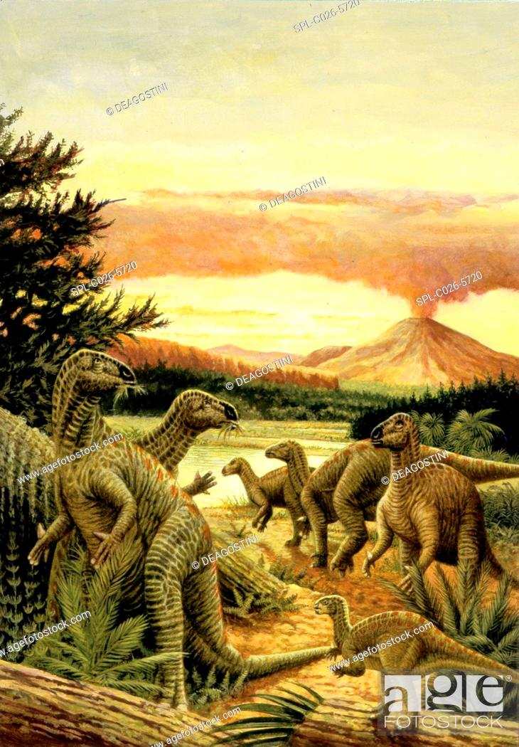 Stock Photo: Iguanodon dinosaurs. Computer illustration of a herd of Iguanodon sp. dinosaurs feeding on plants in a prehistoric landscape.