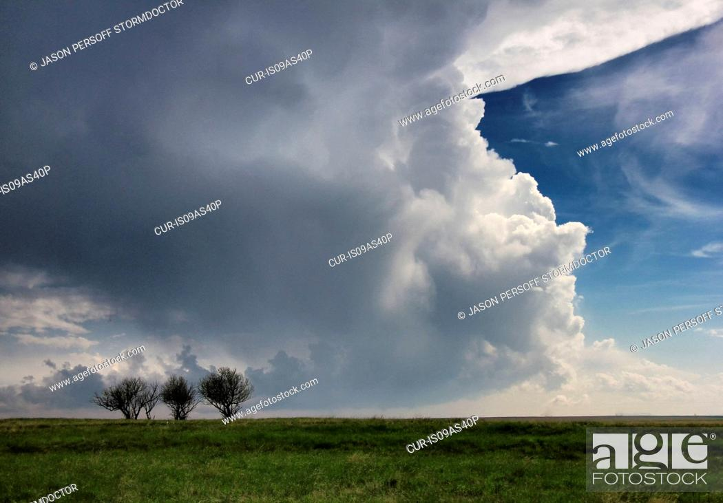 Stock Photo: Supercell forming over plains, three isolated trees in foreground, Chugwater, Wyoming, USA.