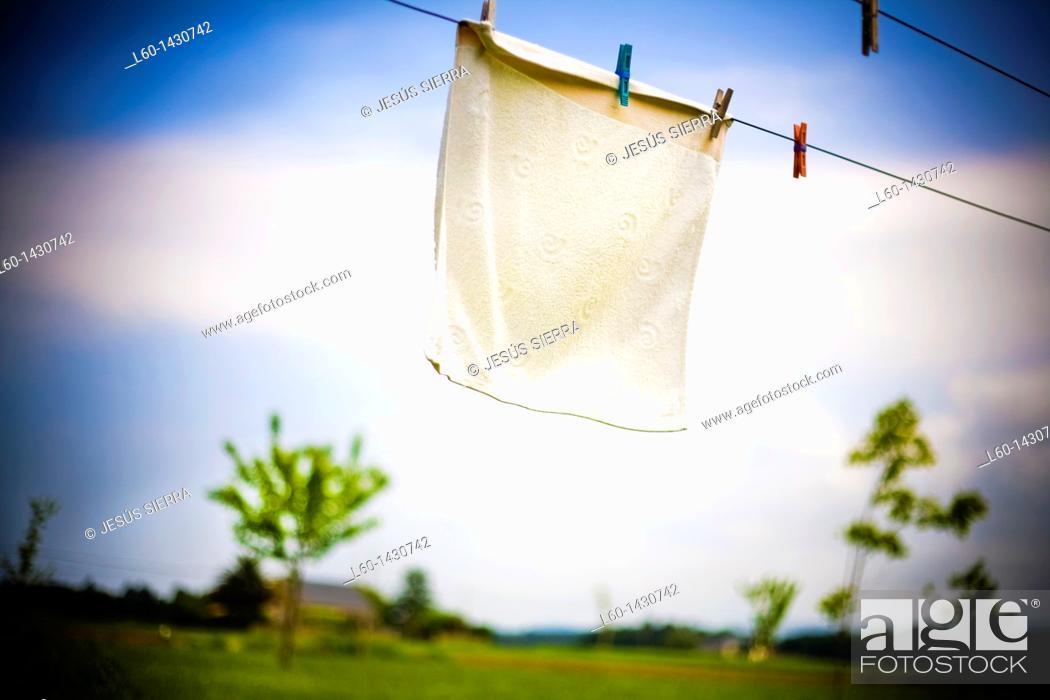 Stock Photo: Clothesline.