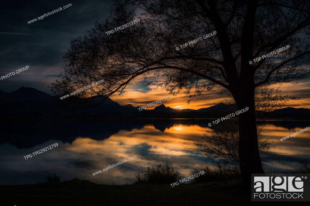 Imagen: Silhouette of tree beside Hopfen Lake;Germany.