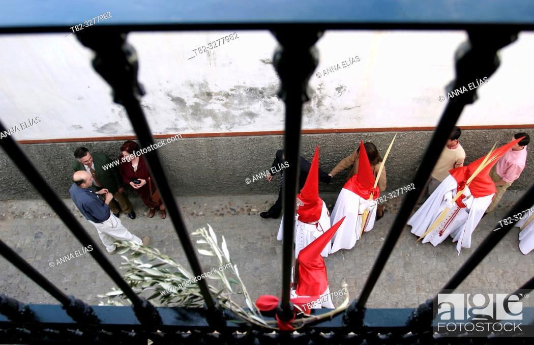Stock Photo: La Borriquita, Marchena.