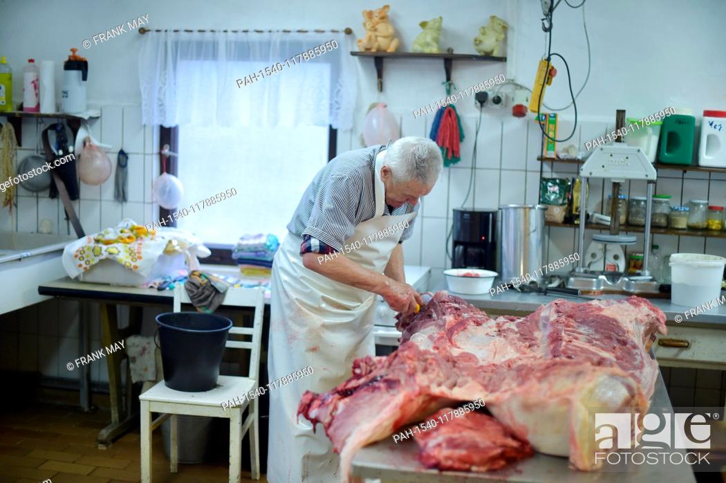 Stock Photo: Home slaughtering, Germany, city of Lindewerra, 01. March 2019. Photo: Frank May | usage worldwide. - Lindewerra/Thüringen/Germany.