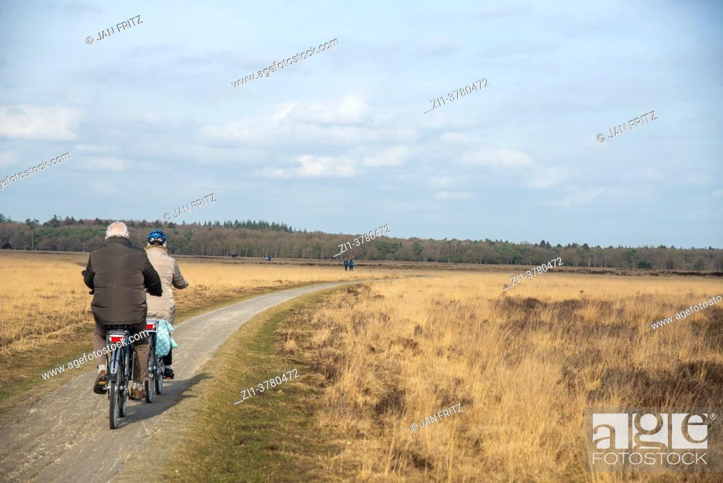Stock Photo: cyclists at Dwingelderveld in Drente, Holland.