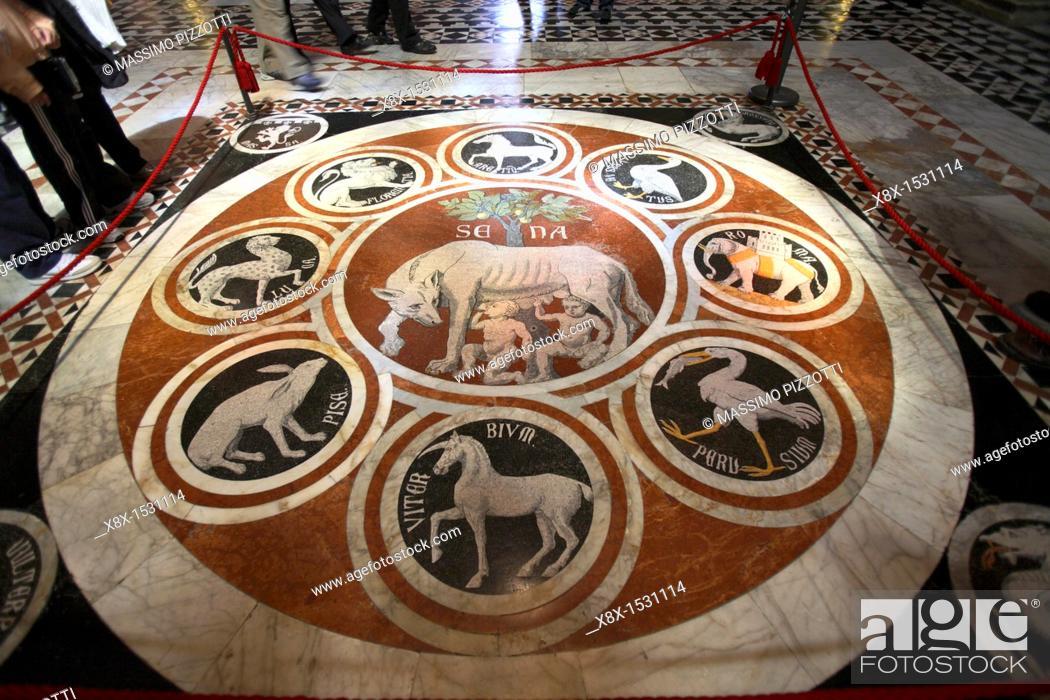 Mosaic Floor With The Wolf Symbol Of Rome Duomo Dellassunta