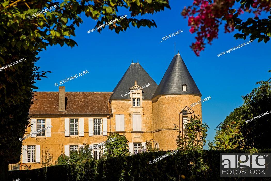 Stock Photo: Chateau Yquem & vineyard. Sauternes Region, Bordeaux, Aquitaine France Europe.