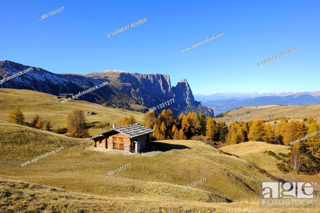 Stock Photo: Seiser Alm mountain pasture with Mt. Schlern, Dolomites, South Tyrol, Italy, Europe.
