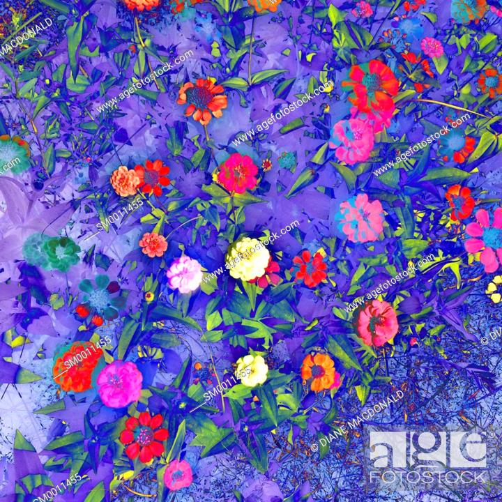 Photo de stock: A colourful background of flowers.