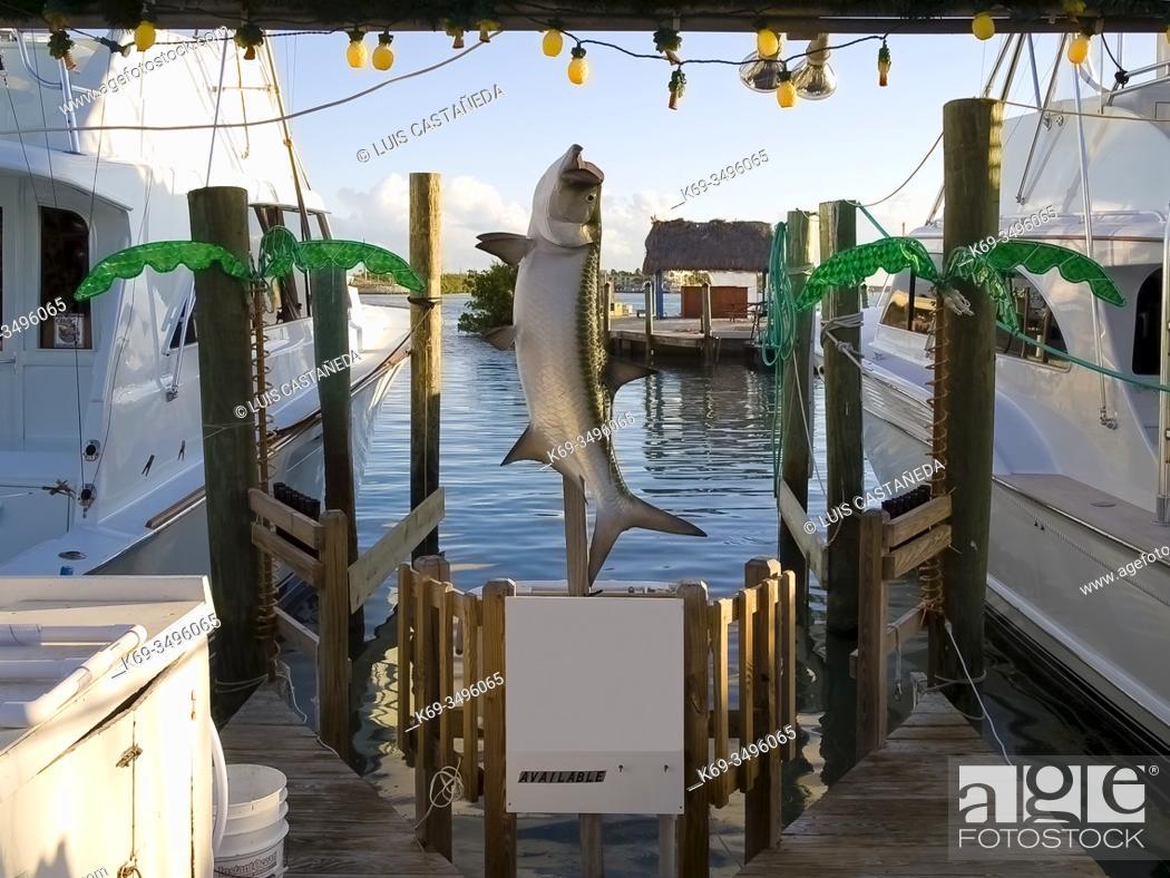 Stock Photo: Fishing Yatches Marina. Islamorada. Florida. USA.