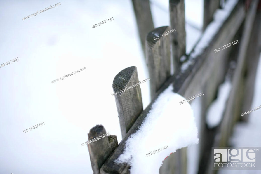 Stock Photo: Snow on a fence.