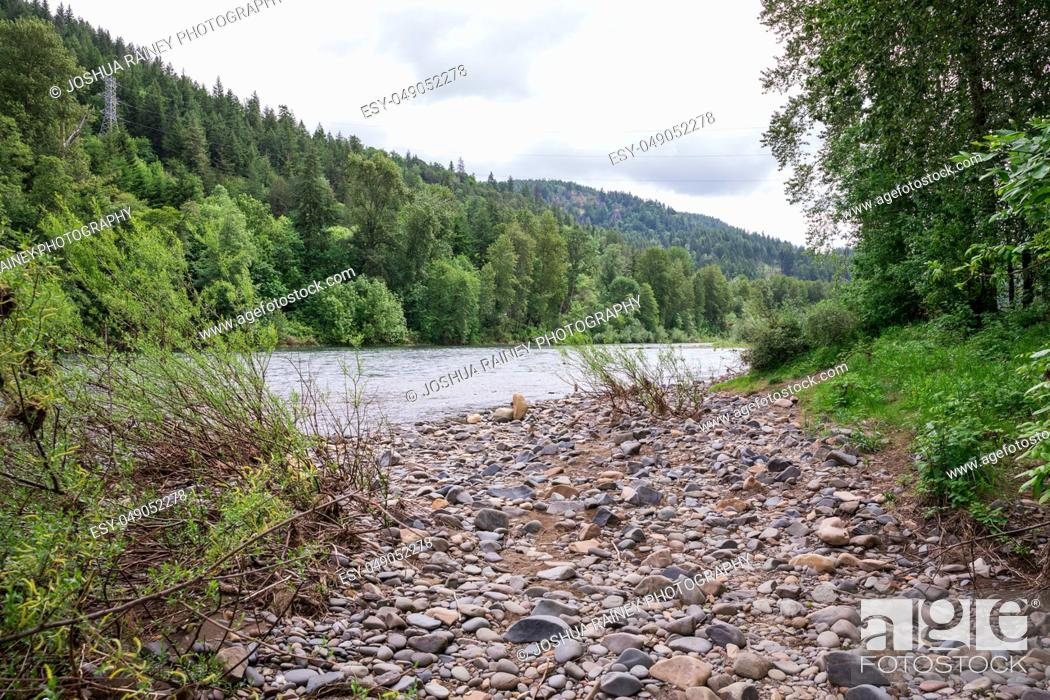 Stock Photo: McKenzie River near Springfield Oregon with high flows of water during the Spring runoff.