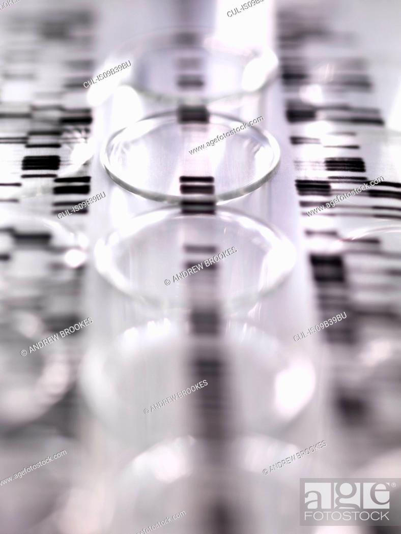 Stock Photo: DNA autoradiogram gel illustrating genetic results laying on a row of test tubes in the laboratory.