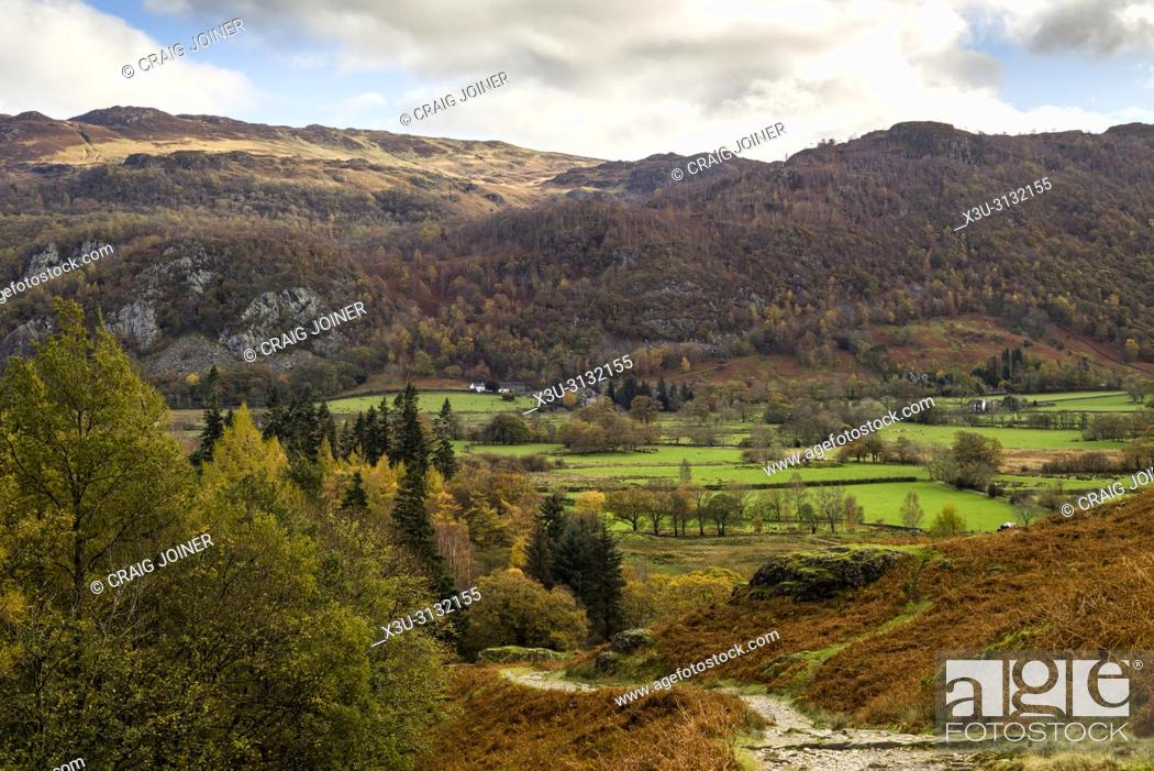 Stock Photo: Borrowdale valley with Ashness Fell beyond in the Lake District National Park, Cumbria, England.
