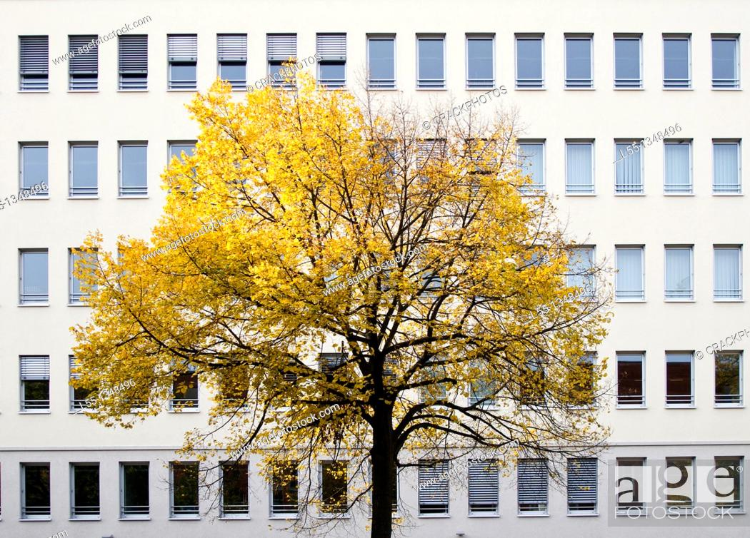 Stock Photo: Germany, Berlin.