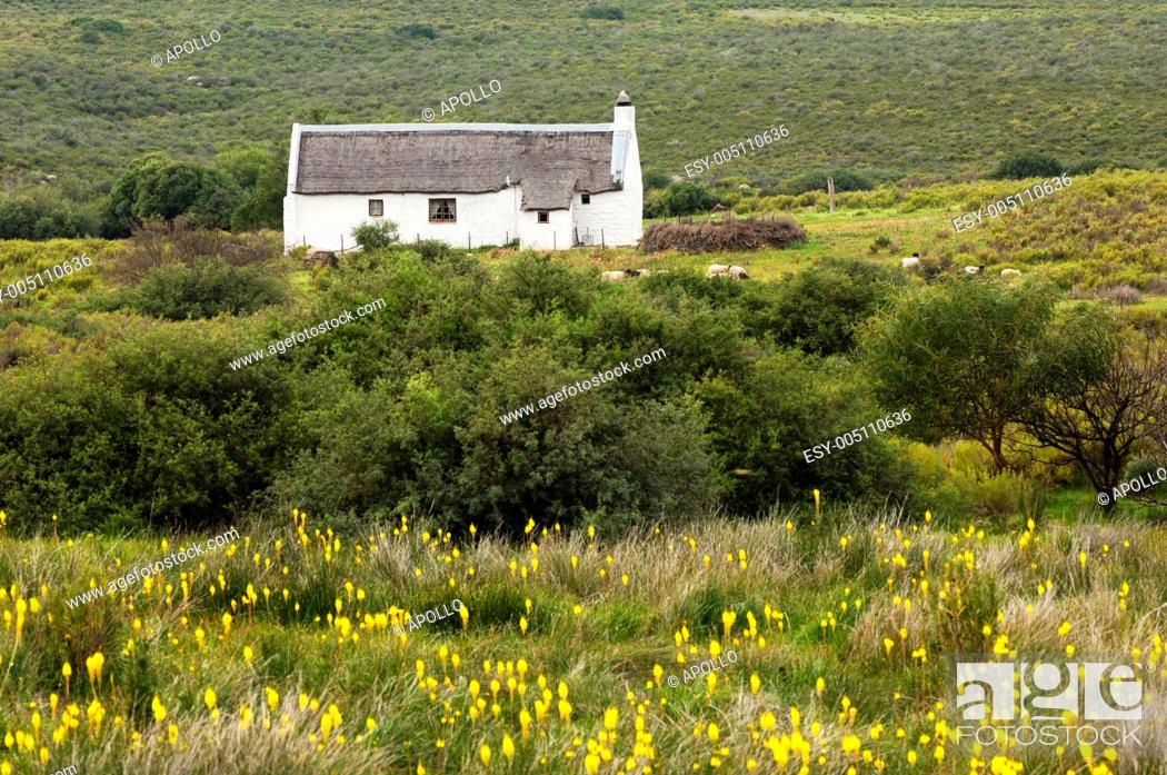 Stock Photo: Remotew farm house on the Bokkeveld Plateau, Nieuwoudtville, Namaqualand, South Africa.