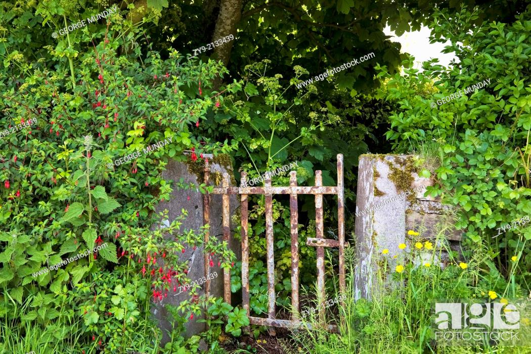 Stock Photo: Old Gateway, Ardmore, County Waterford, Ireland.