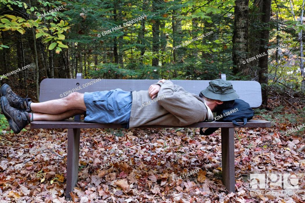 Stock Photo: Man on bench along the Discovery Trail in the White Mountain National Forest of New Hampshire USA during the autumn months  This trail is a living classroom in.