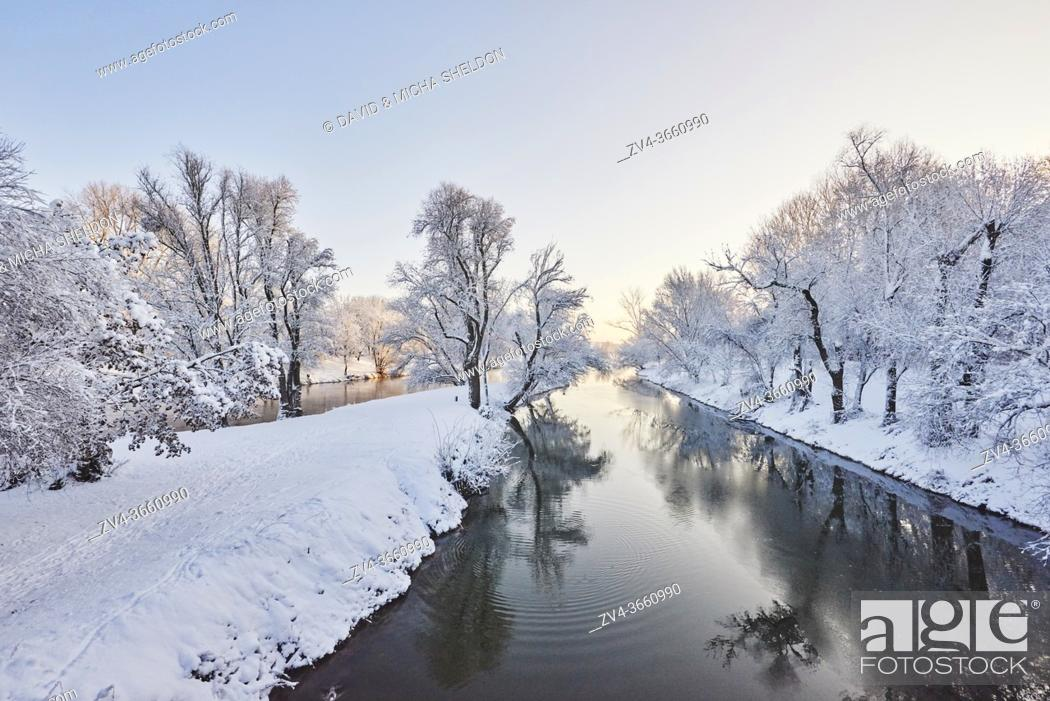 Stock Photo: Landscape of the Donau with snowy trees in winter, Regensburg, Upper Palatinate, Bavaria, Germany, Europe.