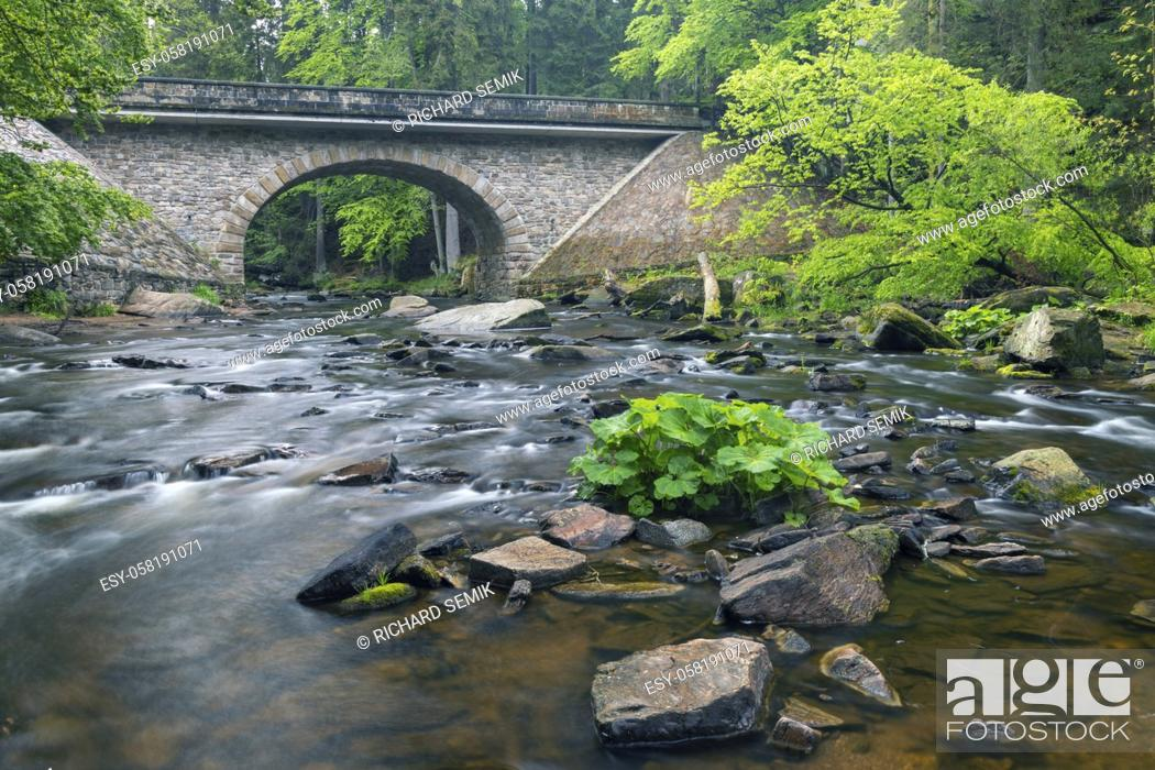Imagen: Divoka Orlice river in Zemska brana nature reserve, Orlicke mountains, Eastern Bohemia, Czech Republic.