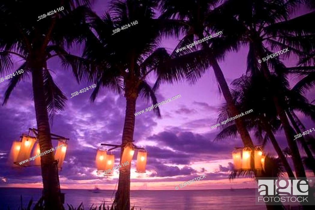 lanterns lit up on palm trees boracay aklan province western