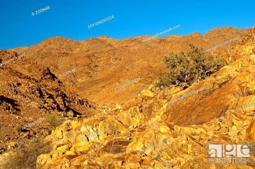 Stock Photo: desert-like landscape in the Richtersveld.