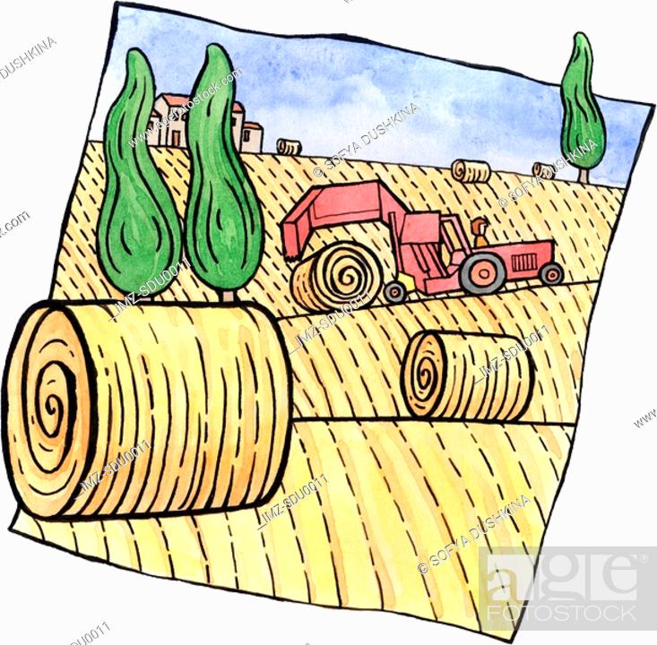 Stock Photo: A tractor rolling bales of hay in the field.