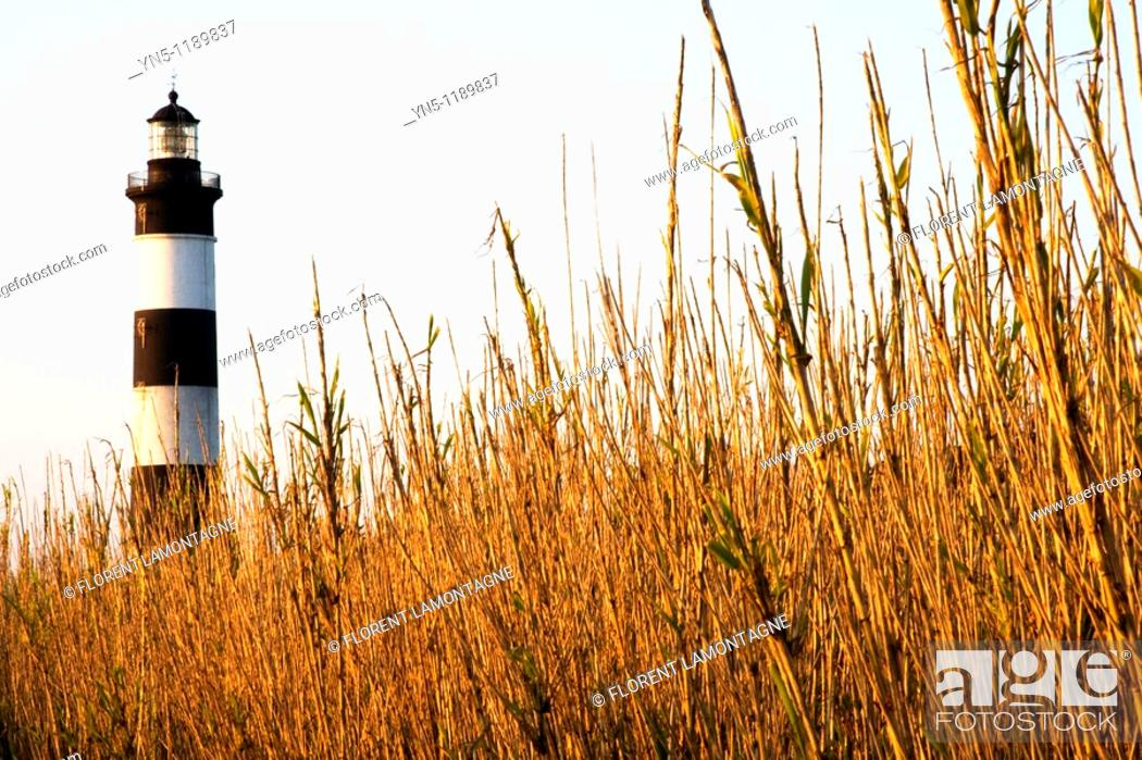 Stock Photo: France, Poitou Charentes province, Departement of Charente Maritime 17, Ile d'Oléron   The lighthouse of Chassiron, the most famous one on the island where the.