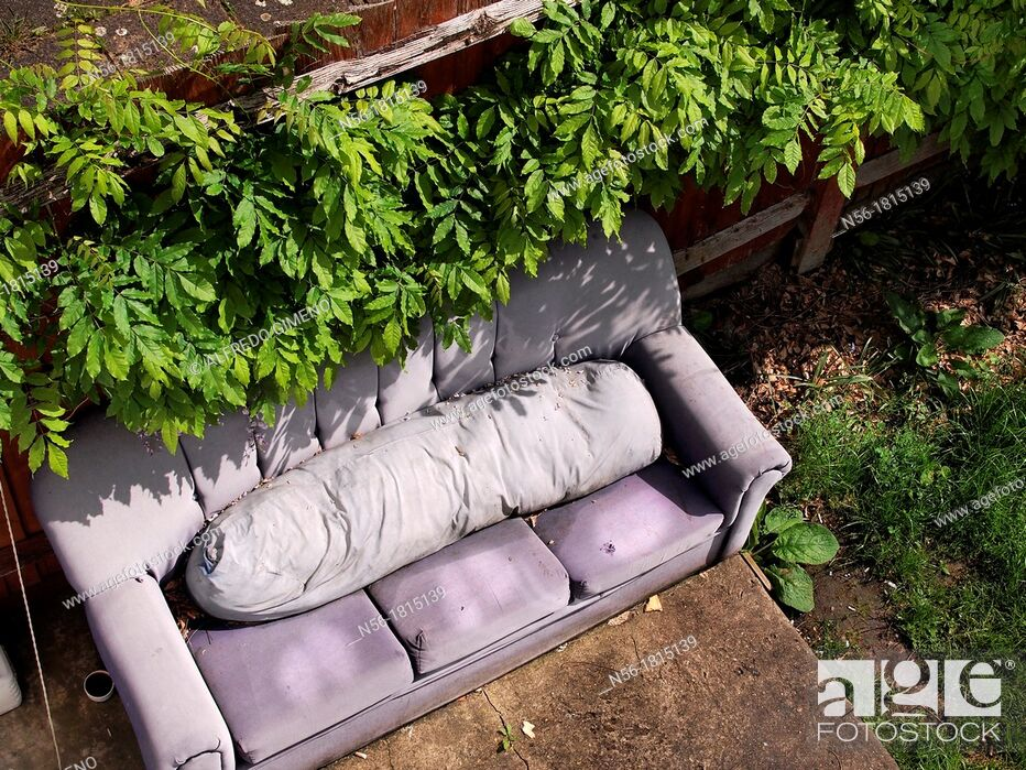 Stock Photo: Sofa in the garden.