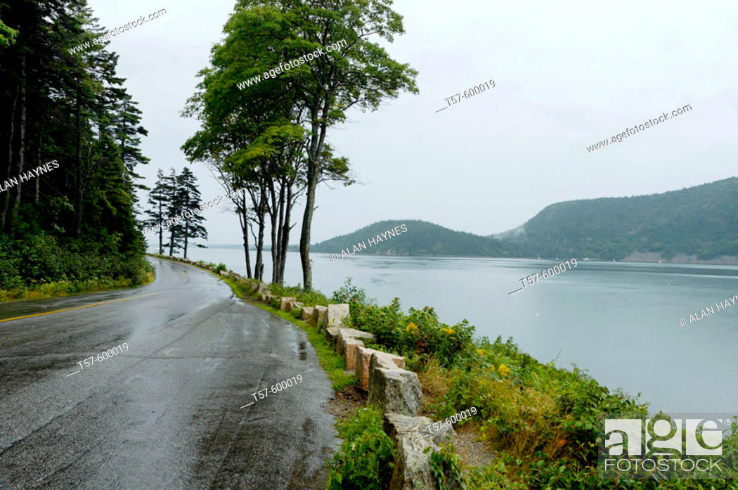 Stock Photo: Deserted wet road on rainy day on Sargeant Drive at Somes Sound, Acadia National Park, Maine, USA.