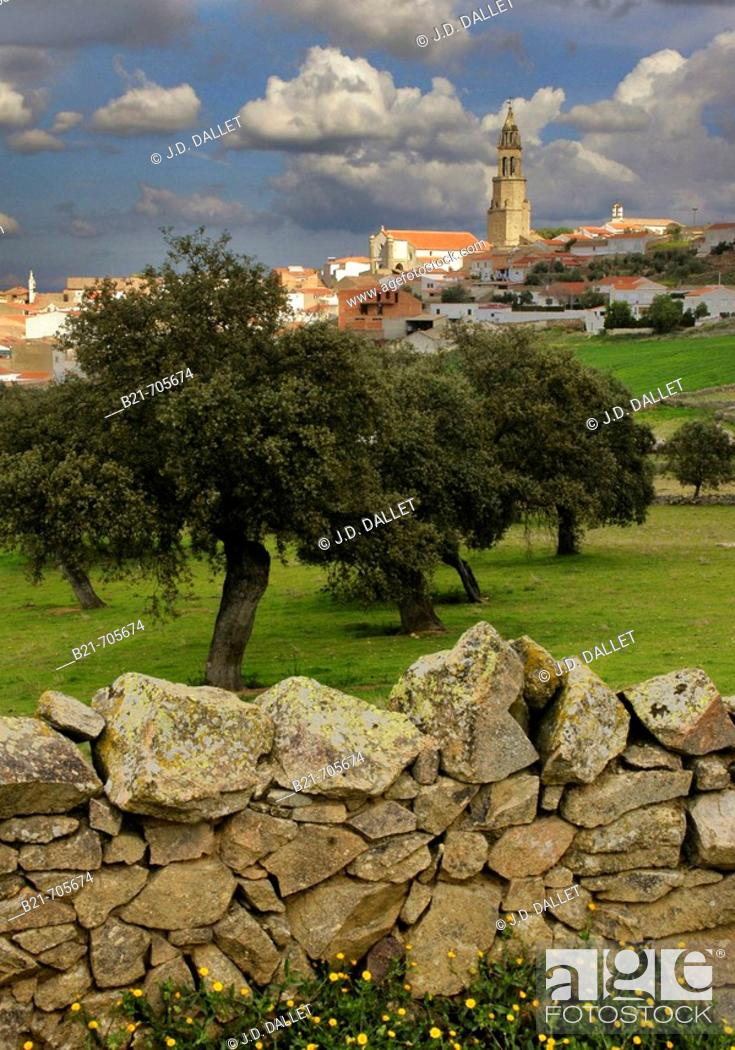 Stock Photo: Spain-Andalusia-Cordoba- village of Los Pedroches.