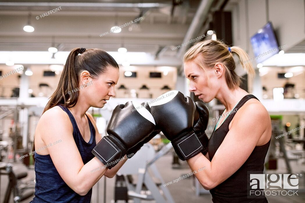 Stock Photo: Young women boxing in gym.