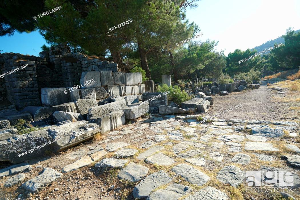 Stock Photo: Priene. Ancient Greece. Asia Minor. Turkey.