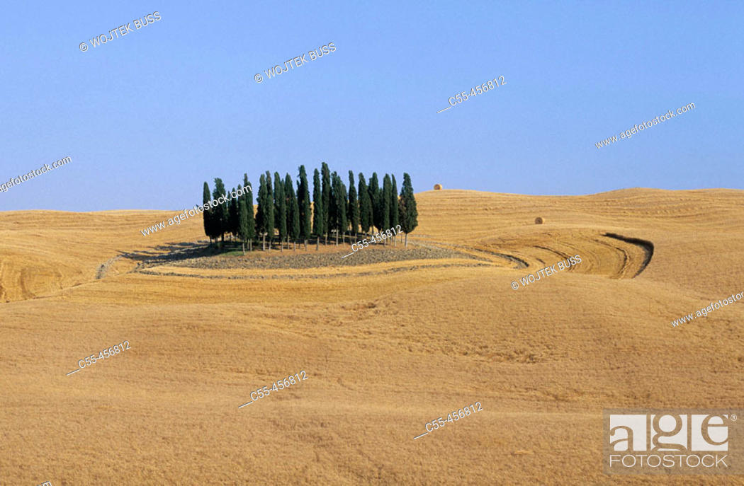 Stock Photo: Tuscan landscape near San Quirico d'Orcia. Italy.