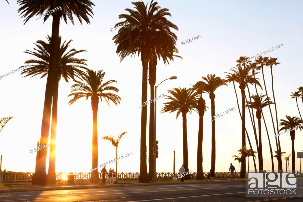 Photo de stock: Late afternoon sun behind Palisades Park with incidental people strolling, Santa Monica, City of Los Angeles, California, USA.