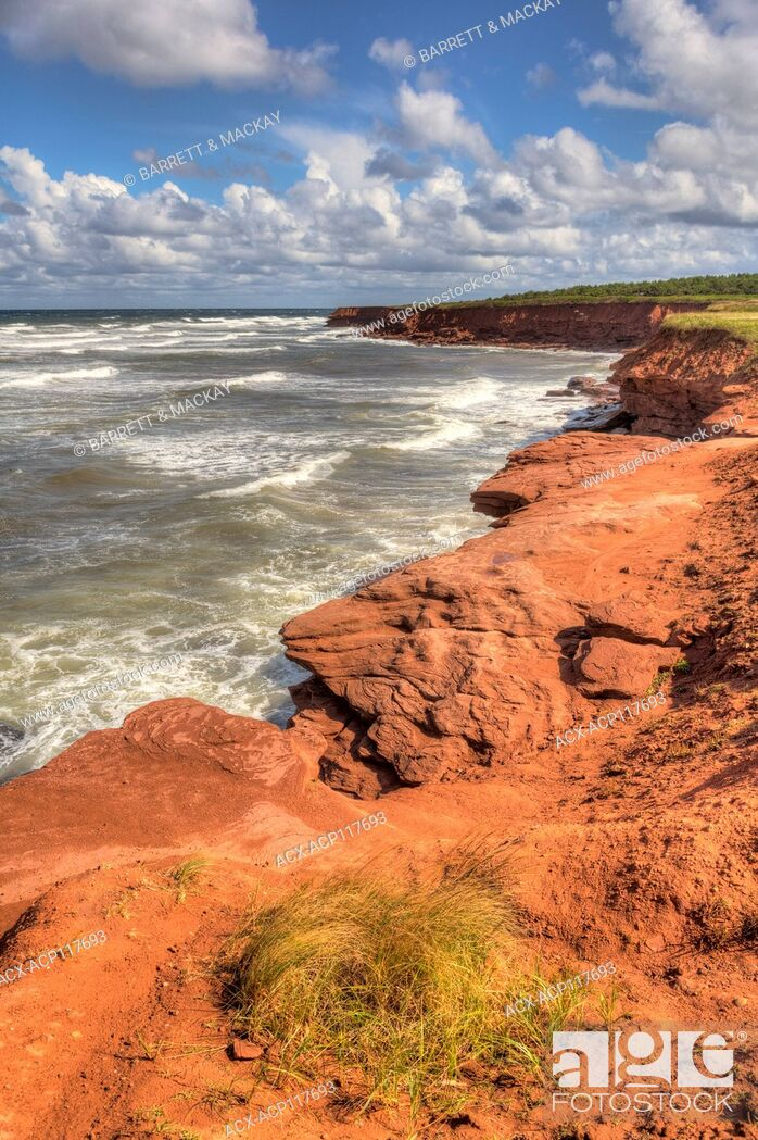 Stock Photo: Red sandstone cliffs, Cavendish, Prince Edward Island National Park, Prince Edward Island, Canada.