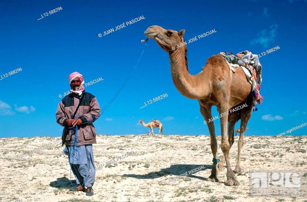 Stock Photo: Desert. Khareejat Nasir. Qatar.