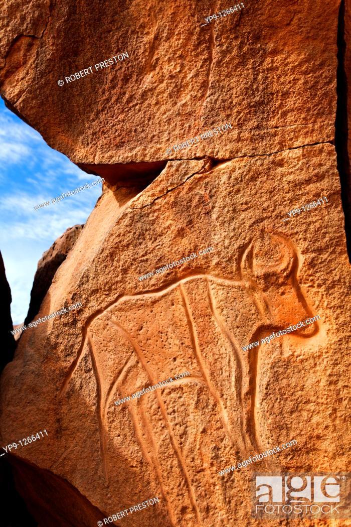 Stock Photo: Ancient engraving of a buffalo at the Wadi Matkhandouch, Libya.