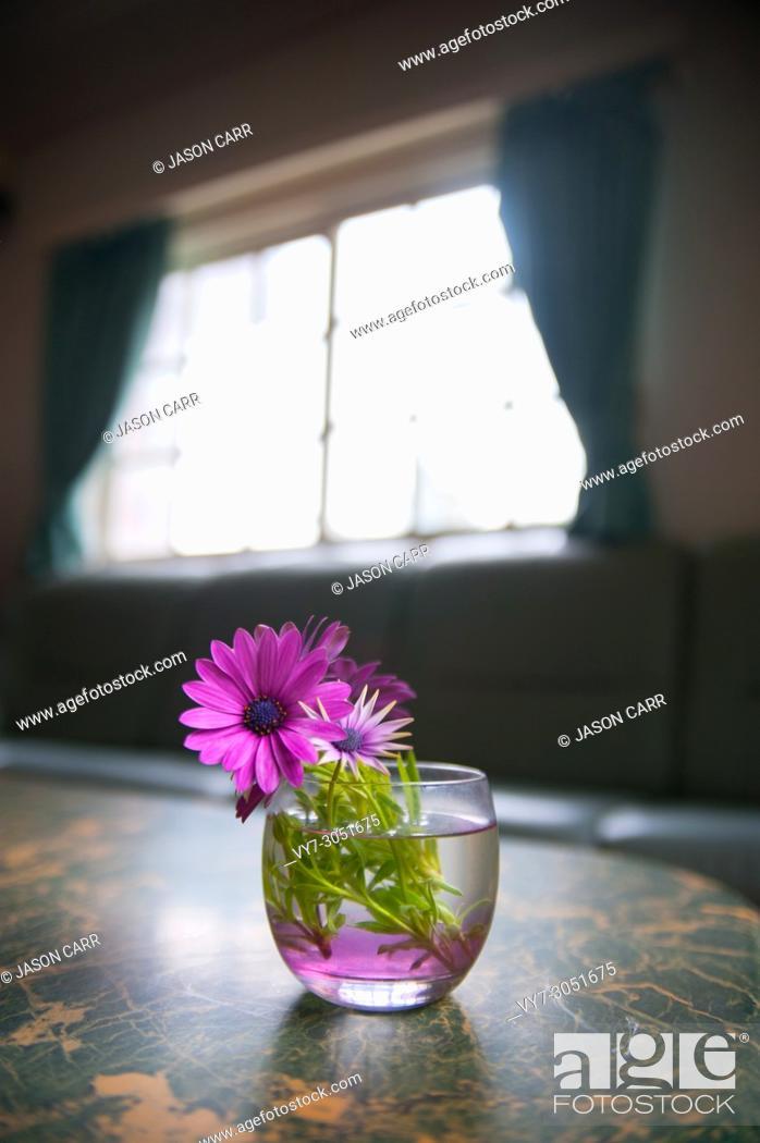 Imagen: Flower on the desk is taken around Tokyo, Japan. It was pictured in the summer season.