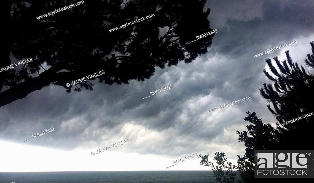 Imagen: Silhouettes of trees and storm clouds. Caldes d'Estrac. Maresme, Barcelona province, Catalonia, Spain.