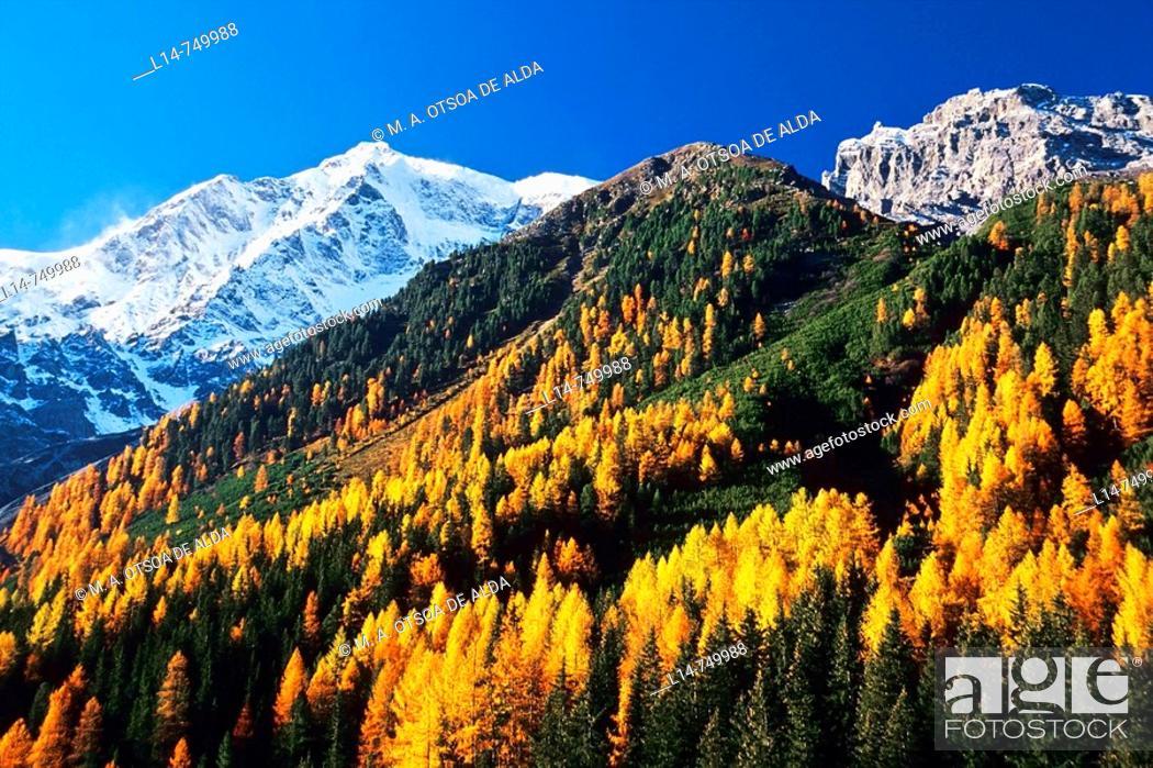 Stock Photo: Mount Ortler (3905 m), Solda (Sulden), Stelvio National Park. Trentino-Alto Adige, Italy.