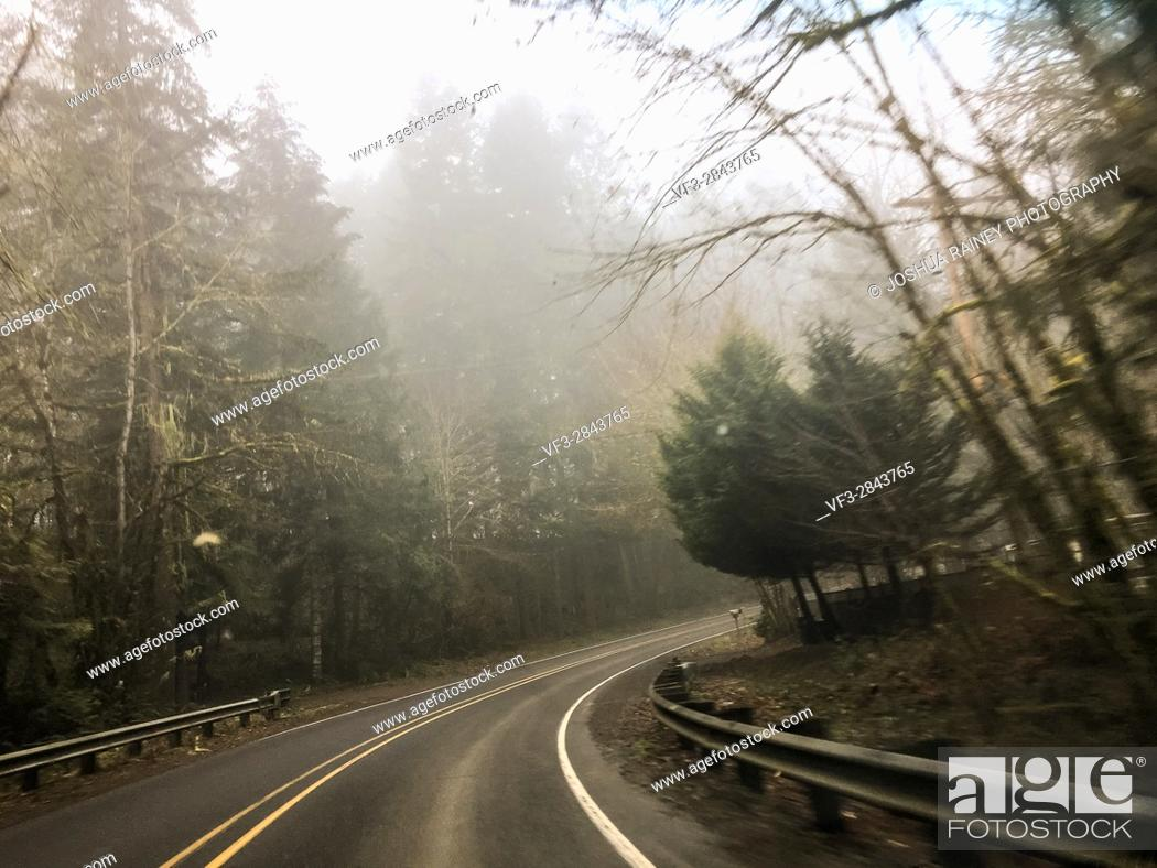 Stock Photo: Right turn with rain coming down and fog in the air on this country highway road in Oregon.